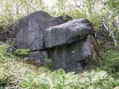 Rock Climbing Photo: Piedmont Boulder Photo by: Matt Johnson