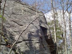 Conservation rock