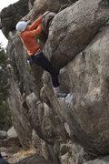 Rock Climbing Photo: Trixie @ the top.