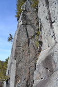 Rock Climbing Photo: Forever Wild