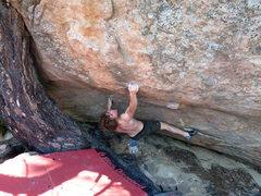 Rock Climbing Photo: Alex crushing