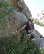 Rock Climbing Photo: Nick at the start