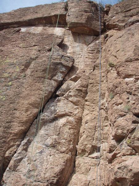 'Queen Creek Freak' on left