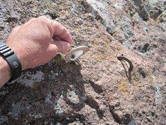 Rock Climbing Photo: Ladder pitch bolts.