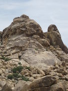 Rock Climbing Photo: Love Shack is the right slanting crack starting on...