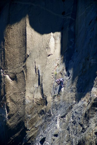 Rock Climbing Photo: Nose.  Switching blocks at top of p 22.  w/ E. Slo...