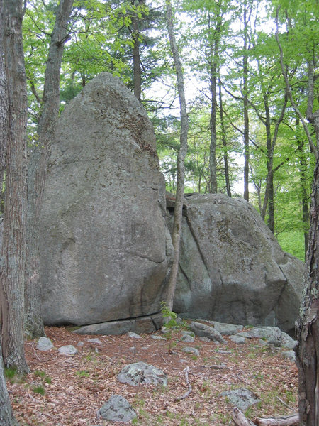 The Fishnet Boulders, as viewed from the west (i.e. picture taken from near The Alcove).<br> <br> Note that the skinny tree right next to the tall boulder has since fallen. Few worthwhile lines exist on the tallest boulder, but the Fishnet Arete (V4) can be found around the backside and is an excellent problem.