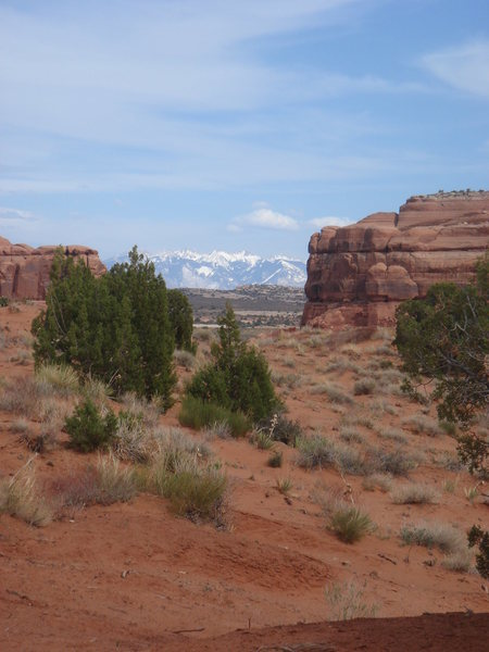 The La Sal mountains, from Tusher Canyon.