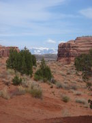 Rock Climbing Photo: The La Sal mountains, from Tusher Canyon.