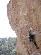 Rock Climbing Photo: Trying to manage the pump on the upper headwall. U...