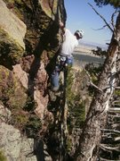 Rock Climbing Photo: Pulling the crux behind the trees.