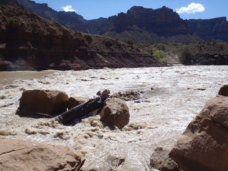Rock Climbing Photo: Rapid in Desolation Canyon