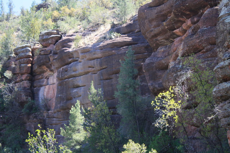 Rock Climbing Photo: Blooming Wall