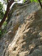 Rock Climbing Photo: Captain's first bolt is barely visible in the sunl...