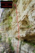 Rock Climbing Photo: Darwin Loves You