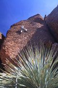 Rock Climbing Photo: Scott on 9 of 40