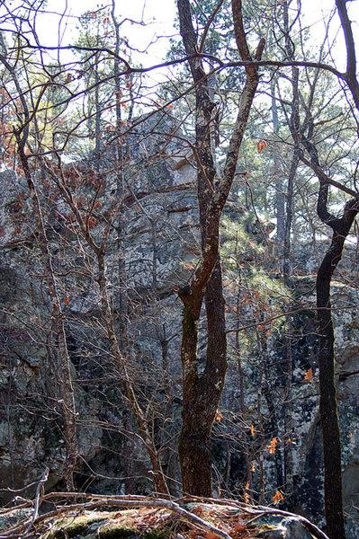 Scenic Overlook Area