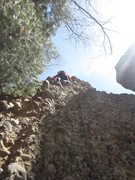 Rock Climbing Photo: Missi's first lead.