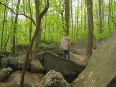 Rock Climbing Photo: Looking for Boulders