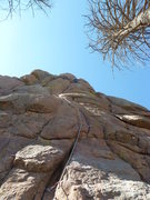 Rock Climbing Photo: In the crux thin crack near the top of pitch one. ...