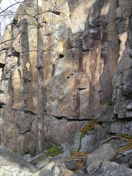 Rock Climbing Photo: Three bolted routes, vertical + small holds, 5.11-...