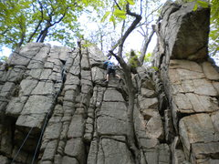 Rock Climbing Photo: The Boy Scout Ledges