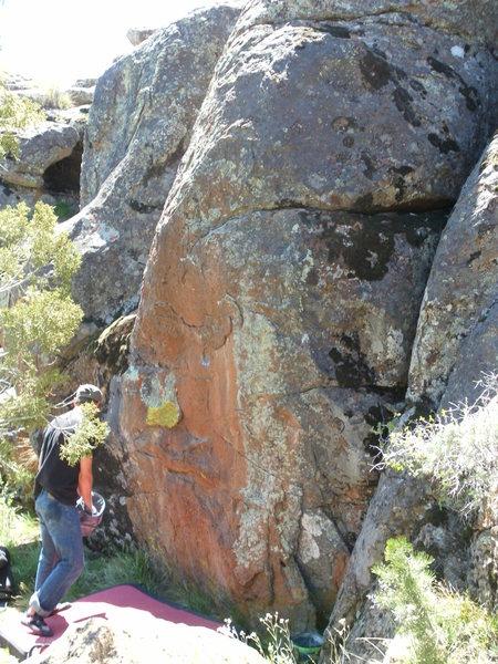 Rock Climbing Photo: Don't mind the moss boulder