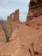 Rock Climbing Photo: Joan nearing the final switchback to the saddle