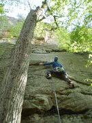Rock Climbing Photo: Knobs!