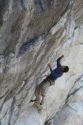 Rock Climbing Photo: To cut or not to cut?