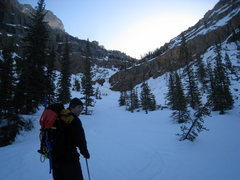 Rock Climbing Photo: Major avalanche gully on the way in to Mount Hecto...