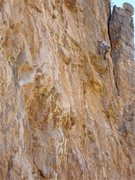 Rock Climbing Photo: Jim Scott moving left to the anchors on his redpoi...