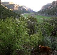 "Rock Climbing Photo: Near the base of ""Rites of Passage,"" Qua..."