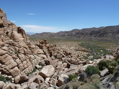 Rock Climbing Photo: The view from the base of RC Rock, Joshua Tree NP