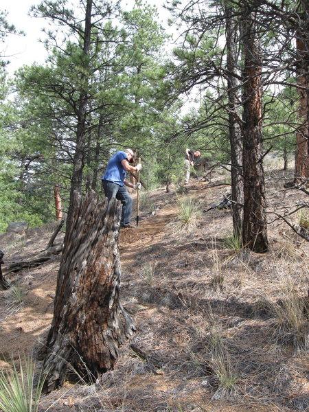 Cutting trail.
