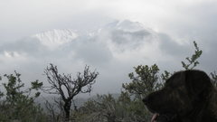 Rock Climbing Photo: Mt Tom and BEORN!!!!!!!!