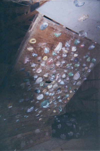 Rock Climbing Photo: My old home wall, all Pusher holds