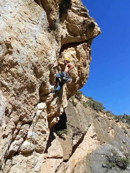 Rock Climbing Photo: In combat mode on steep handjams. Photo by Tom Joh...