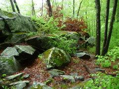 Rock Climbing Photo: humpty dumpty boulder, trapps area.