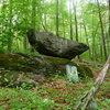 the anvil boulder