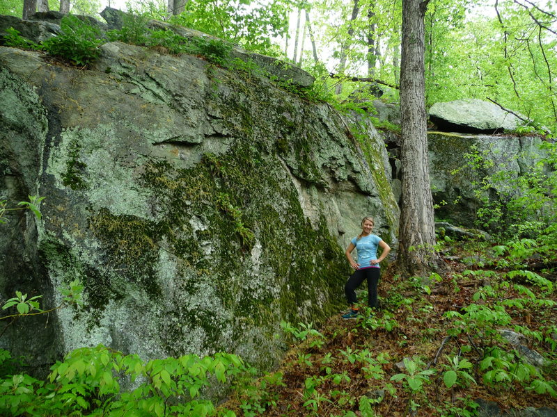 tufa boulder, just before trapps area off game trail