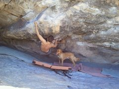 phoenix pays attention and hangs out at the crag