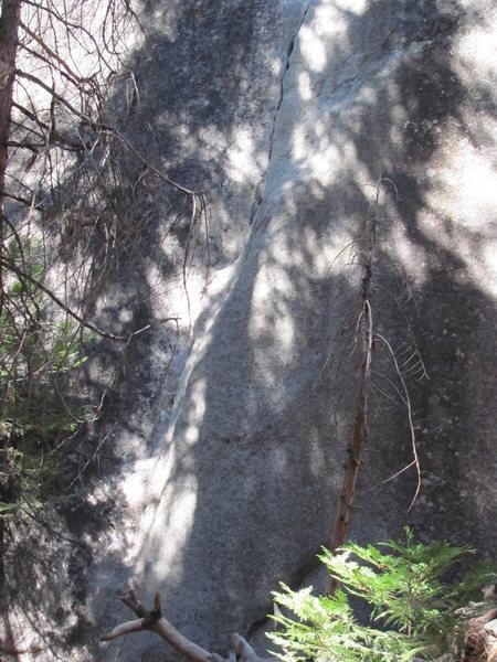 Rock Climbing Photo: Start of Church Bowl Tree.