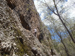 Rock Climbing Photo: Doug Stout starting up the new route on the right ...