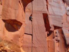 Rock Climbing Photo: jolly rancher