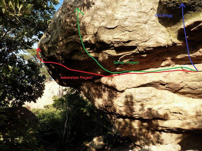 Rock Climbing Photo: Arboretum Roof Area