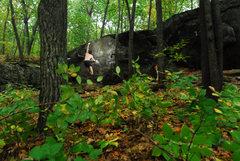Rock Climbing Photo: Chris almost sending Bunny Hop but the rainstorm c...