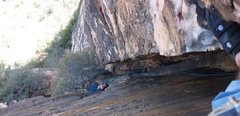Rock Climbing Photo: looking down at the 1st belay station of Black Wid...