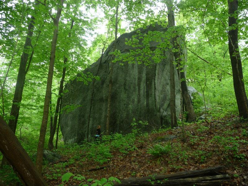 Rock Climbing Photo: field of dreams boulder, Stateline Area  Ct/NY sta...