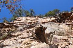 Rock Climbing Photo: Wolfe Wall left.